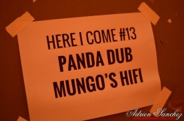 Photo Here I Come #14 Bordeaux Mungo's Hifi Panda Dub photographe adrien sanchez infante rock school barbey reggae (42)