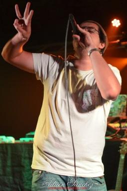 photo Phases Cachées SHT Crew Bayonne Magnéto concert reggae hip hop photographe adrien sanchez infante numan laspla volodia cheeko dclik (46)