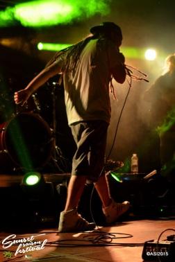 Photo Sunset saison festival 2015 I-Sens the diplomatik's reggae band la teste de buch photographe adrien sanchez infante bassin d'arcachon (50)