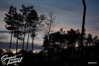Photo sunset saison festival 2015 la teste de buch adrien sanchez infante photographe bassin d'arcachon (2)