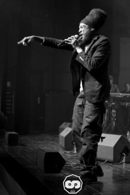photo kid's show festival 2015 6 ème édition yannis odua & artikal band dougy & the peace defendaz martignas sur jalles photographe adrien sanchez infante (25)
