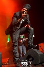 photo kid's show festival 2015 6 ème édition yannis odua & artikal band dougy & the peace defendaz martignas sur jalles photographe adrien sanchez infante (27)