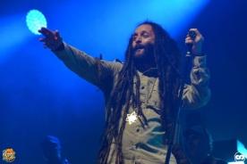 Reggae Sun ska photo adrien sanchez infante bordeaux 2016 alborosie (8)