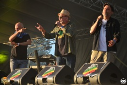 Reggae Sun ska photo adrien sanchez infante bordeaux 2016 massilia soundsystem (2)