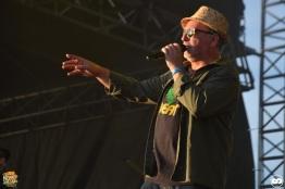 Reggae Sun ska photo adrien sanchez infante bordeaux 2016 massilia soundsystem (6)